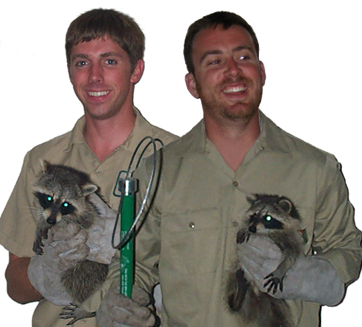 About Us Los Angeles County Wildlife Removal Services